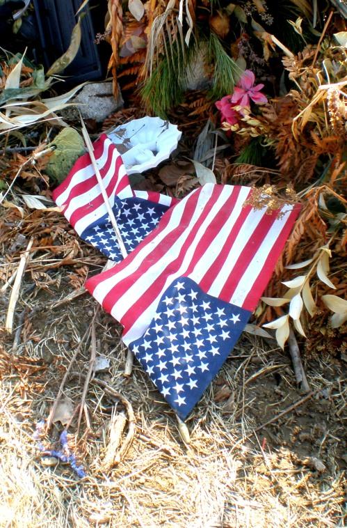 flags n cemetary dump