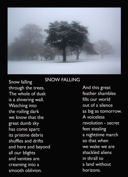 dick jones snow poem
