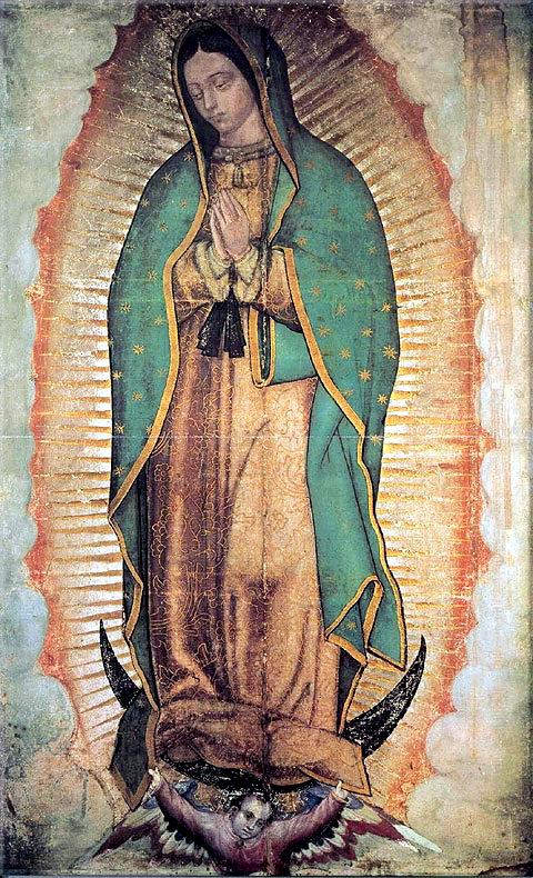 Guadalupe twk