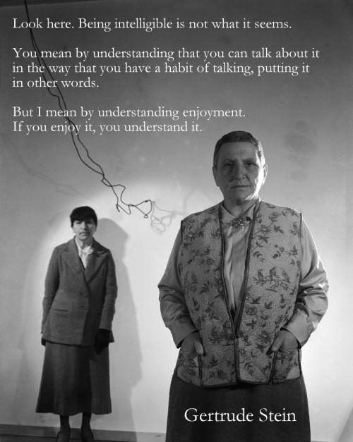 Gertrude Stein enjoyment poster