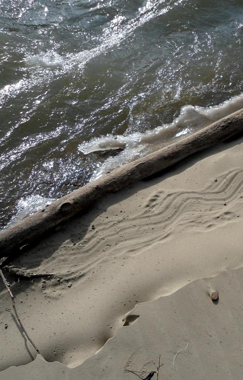 falls o sand track log water