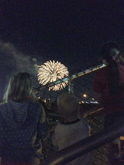 bats fireworks july 3 14  twk