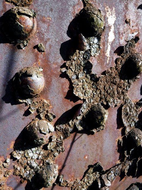 rust never sleeps pope lick rr trestle ortish