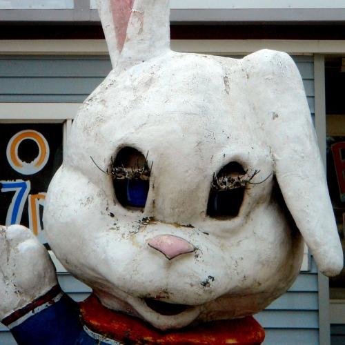 ark bunny