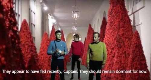 kirk spock redshirt melanias red trees fed dormant
